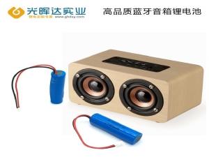 中国锂电池行业市场前景分析预测报告